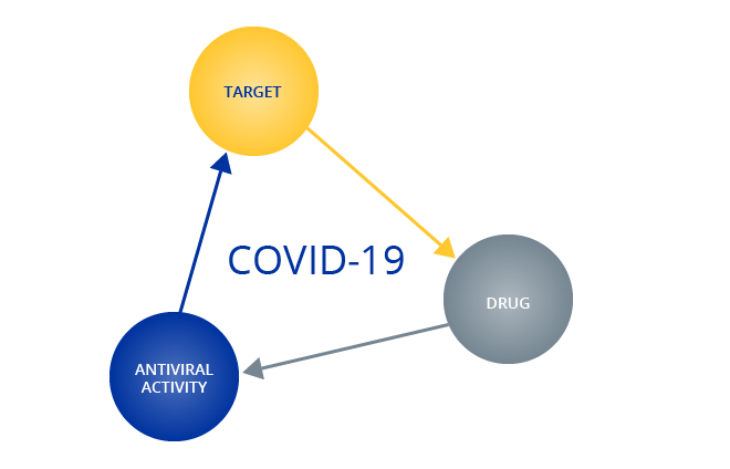 Antiviral-bioactivity-to-Antiviral-activity-01